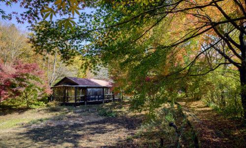 花之江の郷「とらっせバイキング」栃木県栃木市都賀町の和食バイキングランチ